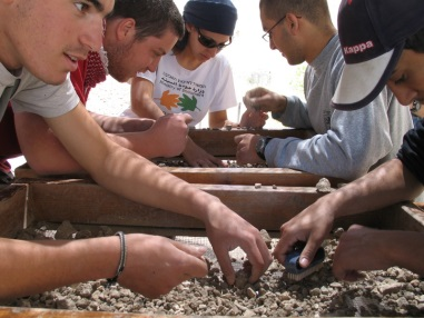 Volunteers sifting at our sifting site in Emek Tzurim National Park.